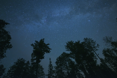 North Woods Night Sky