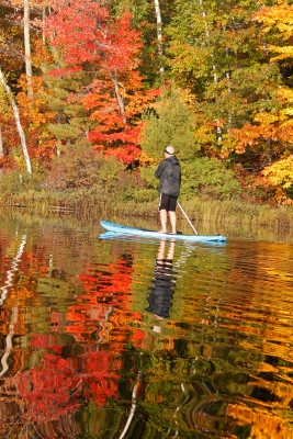 Paddleboarder And Fall Color