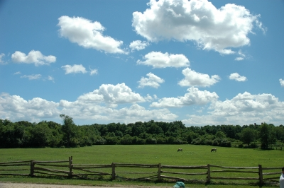 Clouds Over The Meadow