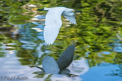 Flying Over The Mirror