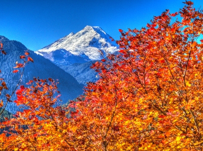 Autumn At Mt. Baker
