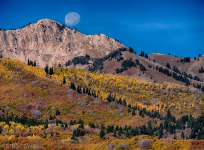 Autumn Moonset