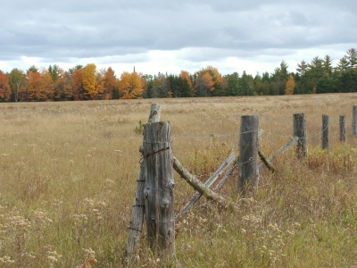 Fall Country Field
