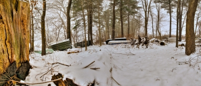 Mosaic Panorama: Winter, Tree Stump, Trees, Boats, Snow