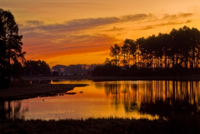Dawn Over The Marshes, Chincoteague, Va
