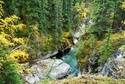 Autumn In Maligne Canyon
