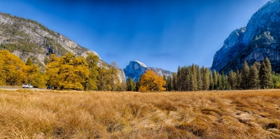 Yosemite National Park, View From Meadow Toward Half Dome