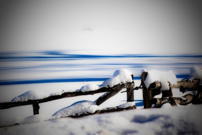 Snowy Old Lonely Fence
