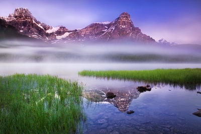 Waterfowl Lake Misty Morning