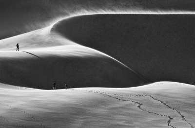 Footsteps In The Dunes, Sand Dunes N.p. Co.
