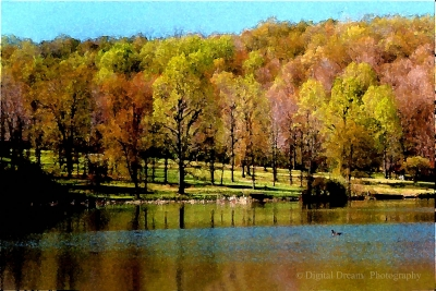 """""""a View Of Fall"""""""