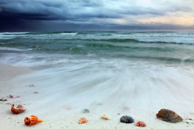 Stormy Sunrise On A Shell-covered Beach