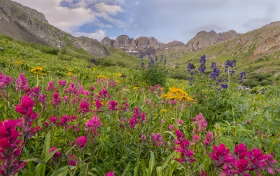 Color Explosion At American Basin