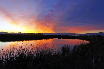 Hill Slough Sunset