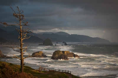 Looking Southward From Ecola Point