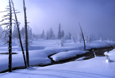 23 Below In Yellowstone National Park