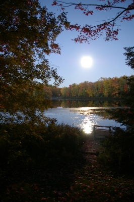 Moon At Cottage