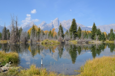 Teton Fall Reflection