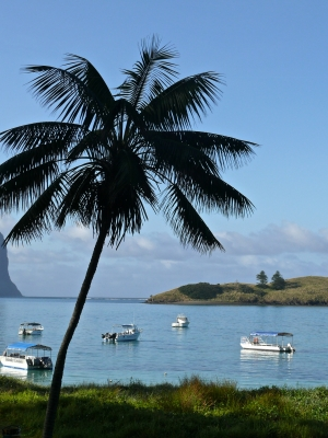 The Lagoon At Lord Howe Island
