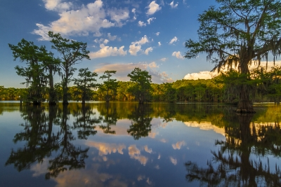 Reflections Of Caddo