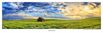 Palouse Barn In Spring