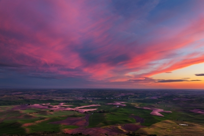 Palouse Color Explosion