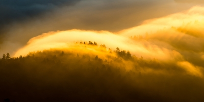 Morning Fire Detail – Great Smoky Mountains National Park, North Carolina