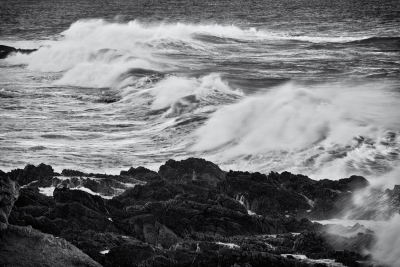 Tidal Action