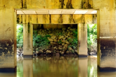 Under The Alcovy