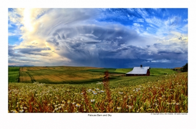Palouse Barn And Sky