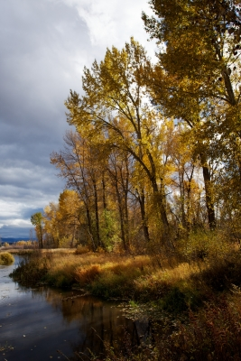Fall On The Refuge