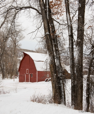 Little Red Barn
