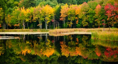 Autumn On Mirror Lake