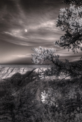 Moonrise, South Rim