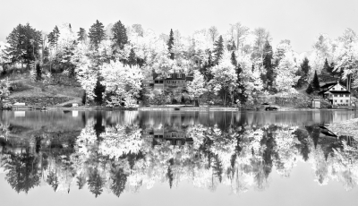 Vermont, Stowe, Montain Mansfield, Foliage, Fall Colors, Reflection, Black-white, Landscape, 佛蒙特, 秋色 风景