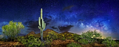 Arizona Night