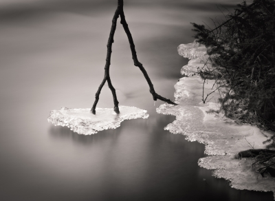 Wolf River – Ice Hanging From Branch