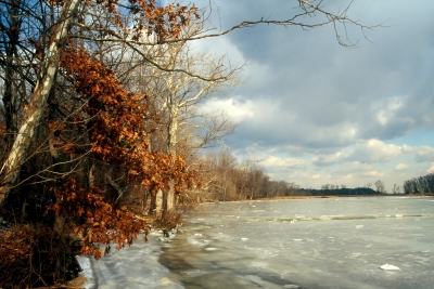 Potomac River Winter No. 014
