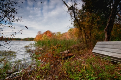 Fall, Reservoir, Boat, Ground, Shrubs, Trees, Sky, Hdr