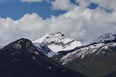 Spring In The Rockies