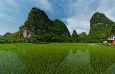 Karst Mountains And Rice Fields Of Yangshou