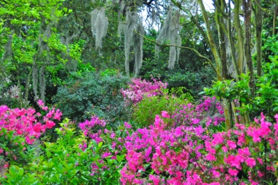 Houmas House Plantation In The Spring