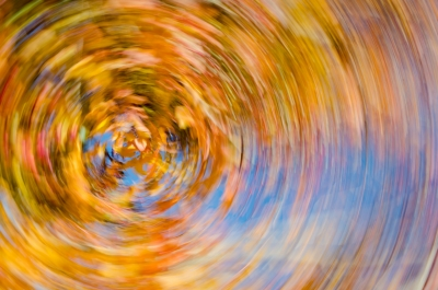 Fall In Spin