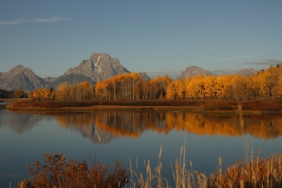 Nature's Fall Colors At Oxbow Bend