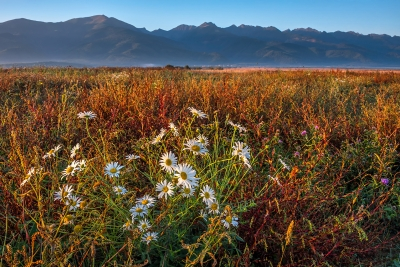 Fagaras Mountains Surrounded By Fall Colors