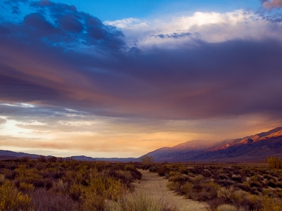 Fall In Owens Valley, California
