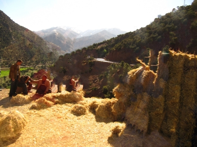 Mishap In The Atlas Mountains.