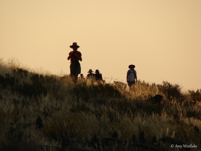 Sunset Hike In Namibia