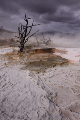 Mammoth Hot Springs Approaching Storm