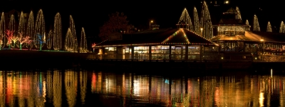 Coulon Christmas
